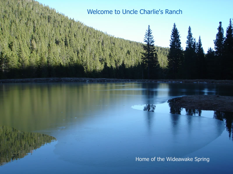 Just west of Denver in the Rocky Mountains, on Uncle Charlie's Ranch, lies a spring with special and unique healing properties. Come visit us...